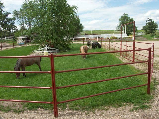 A round rail panel on the grassland.